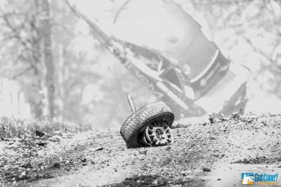 Fetala crash 100 Acre Wood